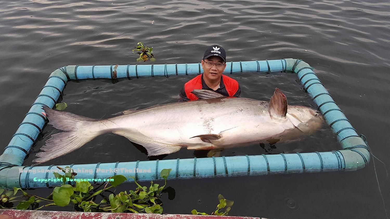 thailand fishing in bangkok