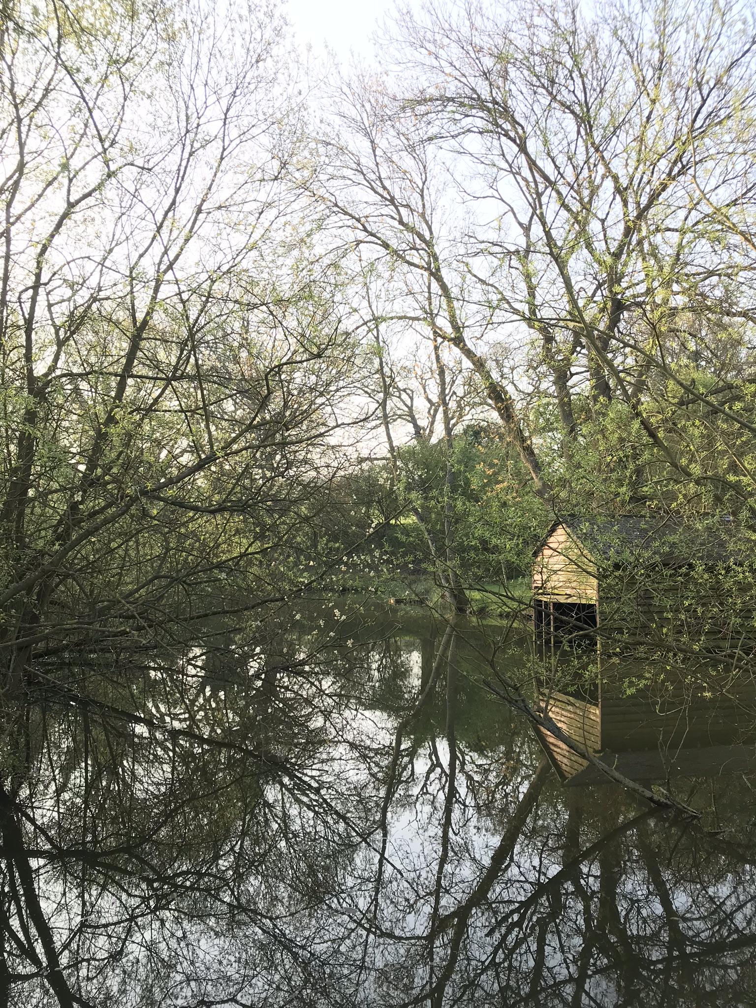 Mill pond bedfordshire
